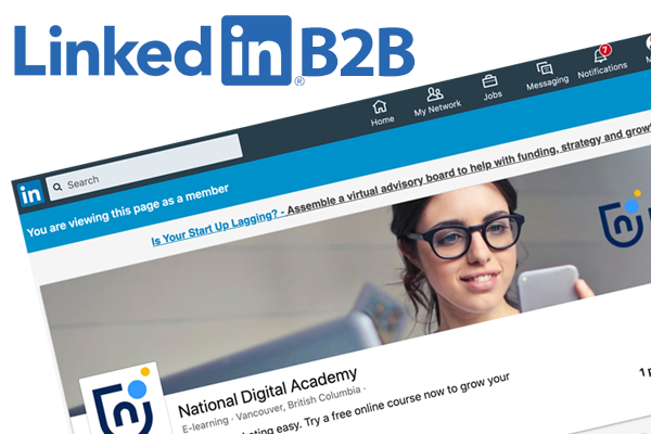 Linkedin B2B posting marketing strategy